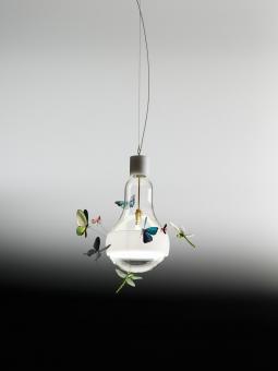designwebstore j b butterfly. Black Bedroom Furniture Sets. Home Design Ideas